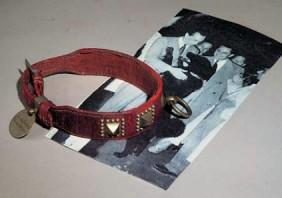 collier-du-chien-till-cuir-rouge-cloute-avec-medaille-pendentif